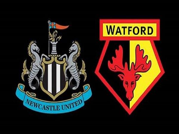 Soi kèo Newcastle vs Watford 21h00 ngày 31/8