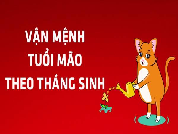 tuoi-mao-sinh-thang-nao-tot-nhat-co-so-vuong